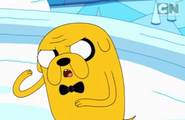 Jake, sort of consfused