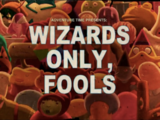 Wizards Only, Fools