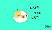 Cake the cat