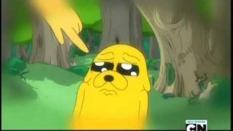 Adventure Time Jake's Flashback