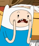 Finn the human boy1