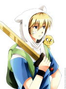 The-Adventurer-adventure-time-with-finn-and-jake-30852249-766-1044