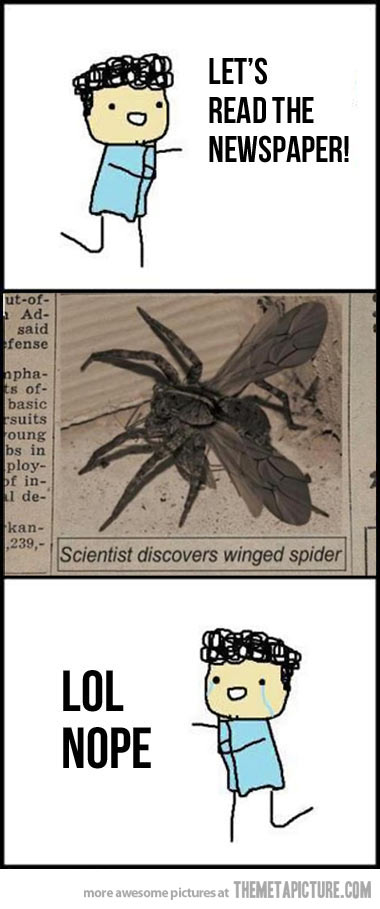 Image - Funny-flying-spider-wings.jpg | Adventure Time ...
