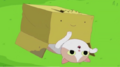 S5 e37 cat rolling over.PNG