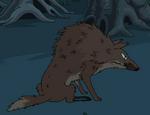 Hierophant wolf