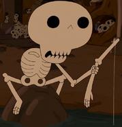VoB Skeleton