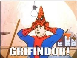 Gryffindorspiderman