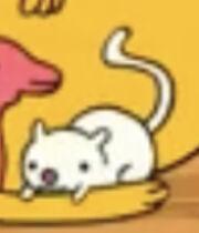 Tiny White Rat