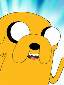 Adventure-time-with-finn-and-jake-john-dimaggio-2