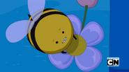 S6e6 Beeandflower