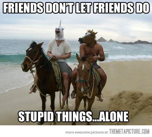image funny friends horse mask jpg adventure time wiki fandom