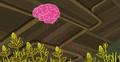 Brain Card.png