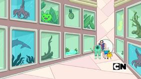 Doctor Gross's Lab