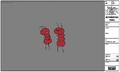 Modelsheet ants.png
