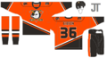 8 Anaheim Ducks Orange.png