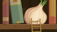 Onion on a shelve