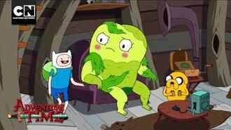Donny the Jerk Adventure Time Cartoon Network