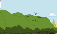 Modelsheet birds