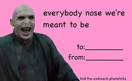 Valentines Meme Harry Potter Voldemort