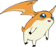Patamon (Digimon Adventure Tri)