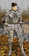 Tieravalon's Armor