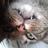 YaellNovella's avatar