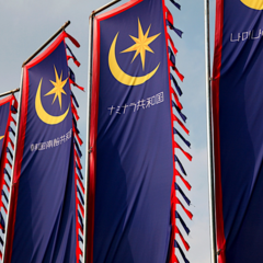 Banners featuring the Moon and Star insignia of the Naminara Republic.