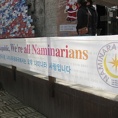 Banner showing the insignia of the Naminara Republic.
