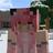 Kamiannerella's avatar