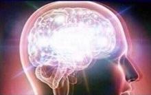 Brain-memes-meta