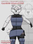 Stormtale creations aesir chronicles characters bio artika breakout