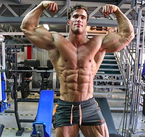 bodybuilding  aesthetics wiki  fandom