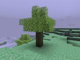 Skyroot Tree