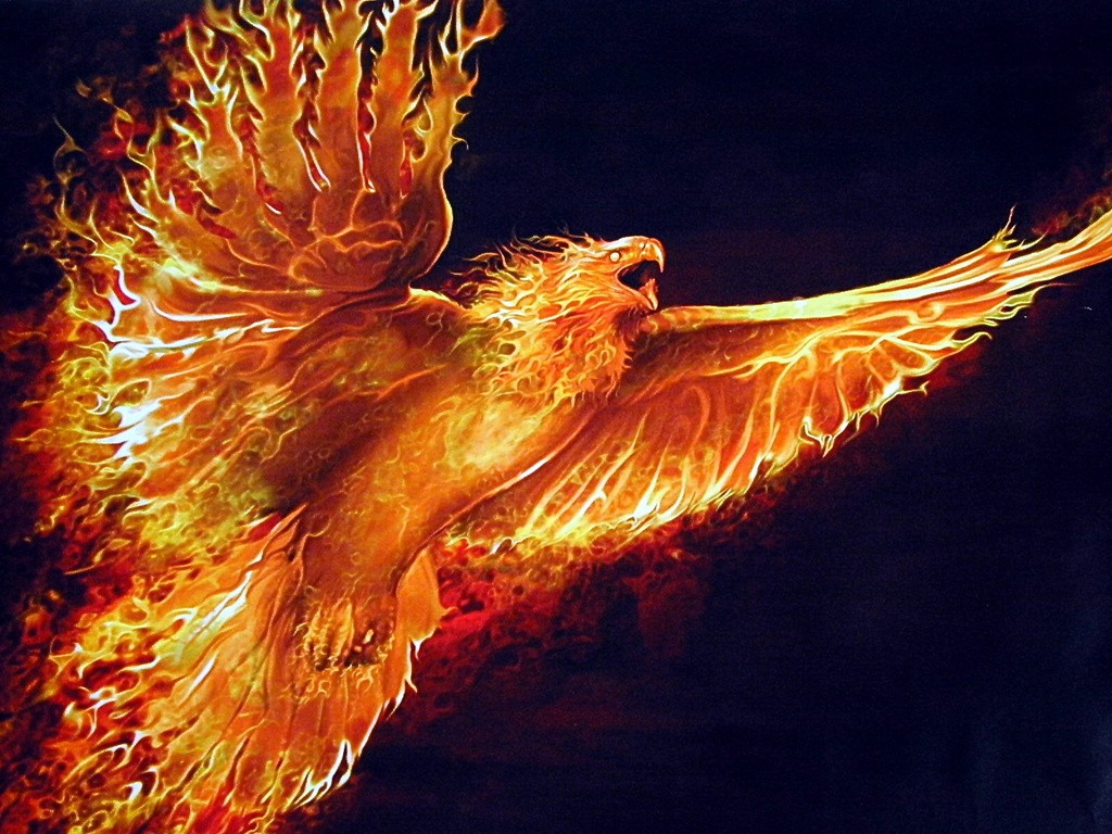 Phoenix moa the aether wiki genesis of the void fandom powered phoenix voltagebd Gallery