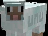 Sheepuff