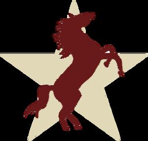 TexasStallions