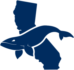 CaliforniaWhales