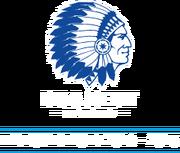 Logo-kampioen
