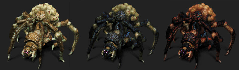 AZ - тарантулы