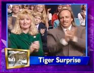 Tiger Surprise Season 6 Episode 8