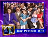 Dog Protects Wife Season 6 Episode 23