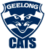 2010 Logo Geelong