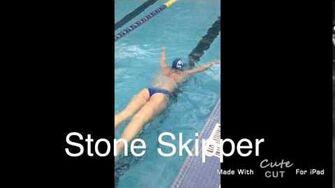 Stone Skipper Butterfly Drill