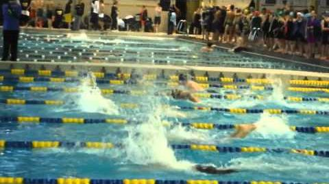 Sead swims to gold in WPIAL class AA in 100 fly, 51