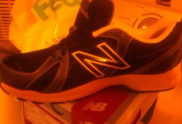 New balance shoe pic