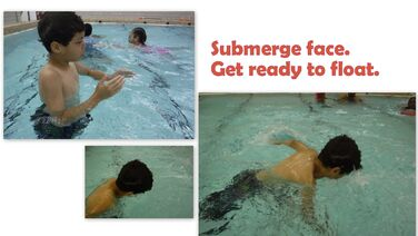 Voyagers-submerge-face-toward-flot