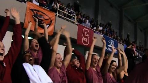 Stanford Women's Swimming & Diving Ready for NCAA's