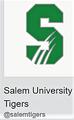 Salem-U-tigers.png