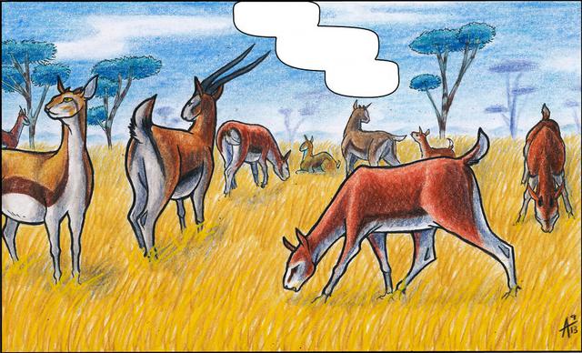 File:Gazelles1.png