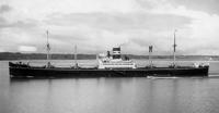 MS Kobayashi Maru